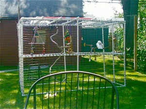 PVC aviary made for under $100.