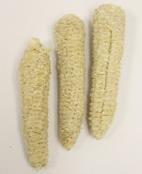 Natural Corn Cob Carrots 3 Pack