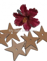 Leather Star Large 3 3/4""