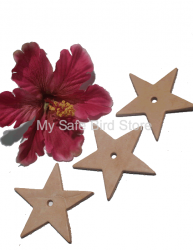 Leather Star Medium 3""