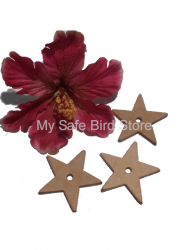 Leather Star Small 2 1/4""