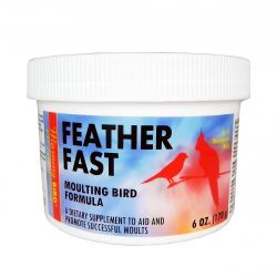 Morning Bird Feather Fast 6 oz