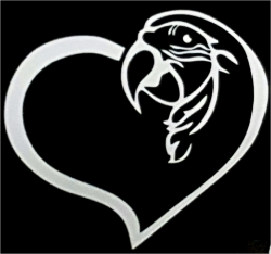 Macaw  Heart Window Decal