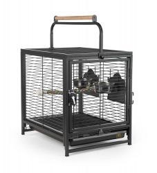 Prevue Wrought Iron Travel Cage