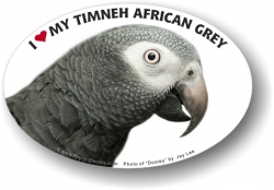Timneh African Decal