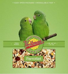 Volkman Avian Science Super Parrotlet 4 lb.