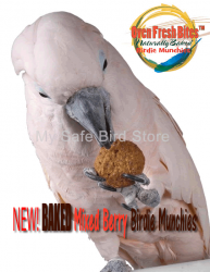 Baked Birdie Munchies Mixed Berry 4 oz