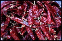 Chili Peppers  - Dried per 1/2 lb.