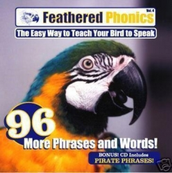 Feathered Phonics Vol. 4 More Words and Phrases!