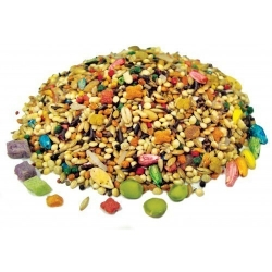 FM Brown's Tropical Carnival Parakeet 2 lb