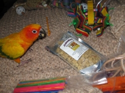 I have Granola, toys and more!!!