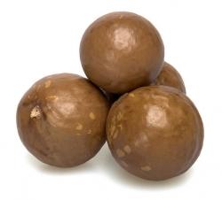 Macadamia Nuts In Shell Bulk Per Pound