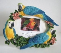 Blue & Gold Macaw Frame 3 1/2 x 5""