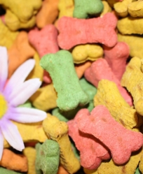 Your Favorite Mini Dog Biscuits 1/2 Pound