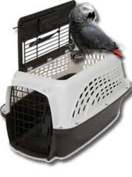 Petmate 2 Door Carrier Pearl/Charcoal 19 Inch