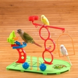 Small Bird Basketball Play Gym
