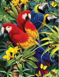 Royal & Langnickel Paint by Numbers Majestic Macaw