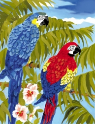 Royal & Langnickel Paint by Numbers Parrots