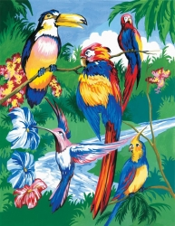 Royal & Langnickel Paint by Numbers Tropical Birds