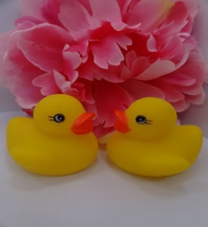 Rubber Duckies 6 Pack