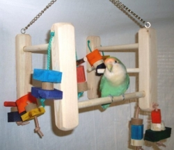 Hanging Play Gym