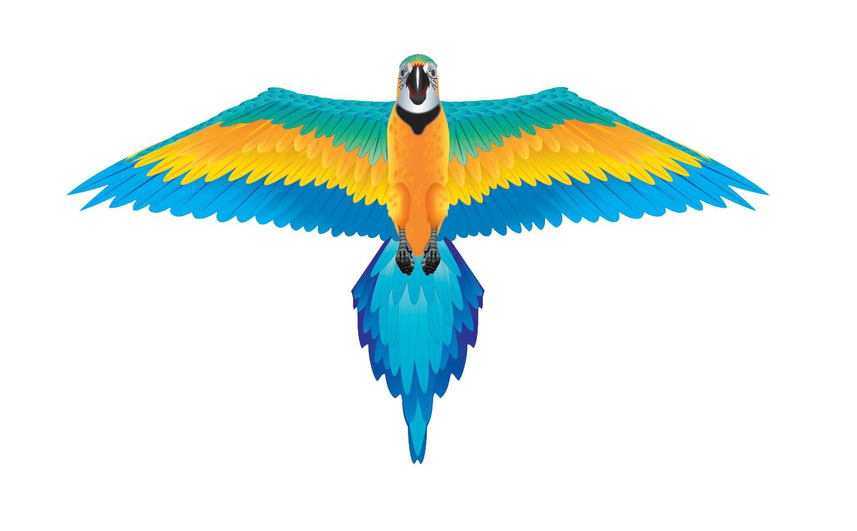Wns70702 Rainforest Macaw Kite Bird Parrotphenalia