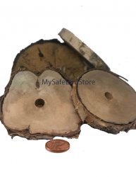 Birch Wood 5 Inch Slice with 5/8