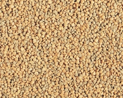 Hari Tropican Lifetime 2mm Granules Per Pound
